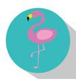 exotic flamingo bird vector image vector image