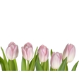 Pink flowers for border EPS 10 vector image vector image