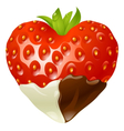 strawberry chocolate vector image vector image