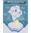 Arctic North Pole infographics statistical data vector image vector image
