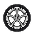 auto tyre or isolated automobile wheel on white vector image vector image