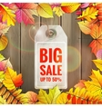 Autumn seasonal sale label EPS 10 vector image