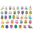 big collection cute owls clipart bundle vector image