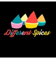 colorful spices vector image vector image