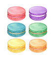 cute watercolor pastel macarons vector image vector image