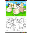 happy sheep characters group coloring book vector image vector image