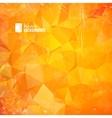 Orange triangle vector image vector image
