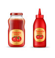 realistic set with two bottles of ketchup vector image vector image
