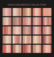 rose gold gradient collection for fashion design vector image vector image