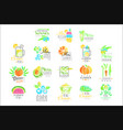 summer vegetarian menu set for logo design vector image
