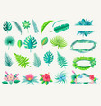 tropical leaves and exotic flowers set on white vector image