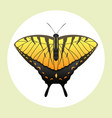 colorful butterfly with abstract decorative vector image