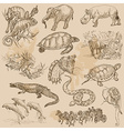 An hand drawn pack - ANIMALS vector image vector image