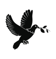 dove peace flying with twig olive icon vector image