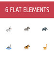 flat icons horse pony waterbird and other vector image vector image