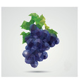 Geometric polygonal fruit triangles grapes vector image vector image
