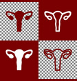 human anatomy uterus sign bordo and vector image vector image