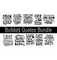 lettering typography cute bulldog quotes design vector image vector image