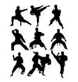 Taekwondo and Karate vector image vector image