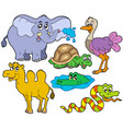 tropical animals collection vector image
