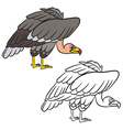 vulture coloring book vector image vector image