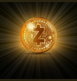 zcash golden coin vector image