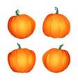 orange pumpkin set autumn vector image