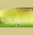 brown blur background spring meadow vector image