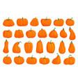 cartoon orange pumpkin icon collection for design vector image