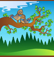 two cute birds sitting on branch vector image vector image