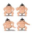 sumo japan culture cartoon character vector image