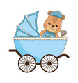isolated baby bear cartoon design