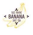 100 percent organic banana label with whole vector image vector image