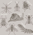 Insects 8 bugs vector image vector image