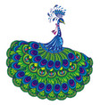 peacock drawing fantasy vector image vector image