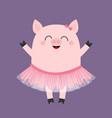 pig bellerina piggy piglet ballet dancer dressed vector image vector image