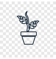 plant concept linear icon isolated on transparent vector image