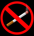 sign prohibiting smoking vector image vector image