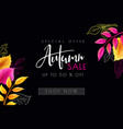 autumn sale banner with hand lettering and vector image