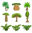 Jungle Trees And Plants Set vector image