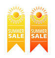 summer sale banner design stock vector image