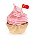 Turkish Cupcake vector image vector image