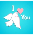 Valentine card with white dove and heart vector image