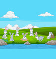 cartoon funny rabbit playing on grass field vector image