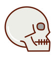 human body skull anatomy organ health line vector image vector image