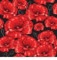 poppies seamless wallpaper vector image vector image