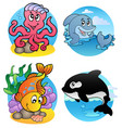 various aquatic animals and fishes vector image