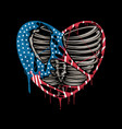 a torn heart with colors united states vector image vector image