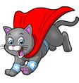 cat superhero pet cartoon clipart vector image