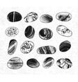 collection of textured pebble stones hand drawn vector image